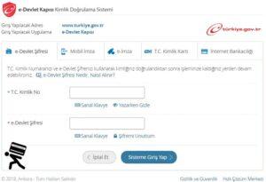 Edevlet giriş turkiye.gov.tr